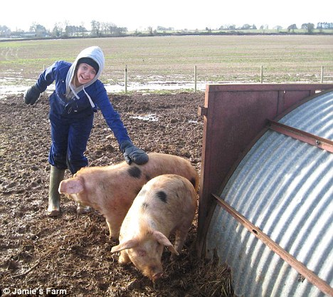 Glorious mud: Pigs get a helping hand